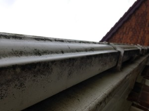 guttering_cleaning_cambridge_before